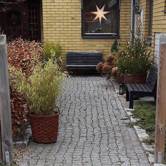 Instagram media by enskimrandetradgard - Här bor jag i ett klassiskt 70-tals hus. Renovering av huset är påbörjad men ack så långsamt det går. Mycket roligare att anlägga en ny trädgård. Fin lördag på er! / My house #trädgårdsdesign #puutarha #trädgårdsinspiration #garden #tuin #gardendesign #gardeninspiration #mygarden #tradgardsinspo #trädgårdsinspo #minträdgård #instagarden #giardino #jardin #garten #gartendesign #trädgård #have #minhave #minhage #hageinspiration #hagedesign #hage…