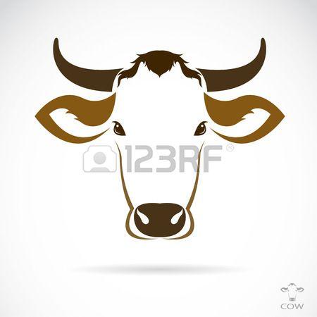 Vector immagine di una testa di mucca su sfondo bianco Archivio Fotografico