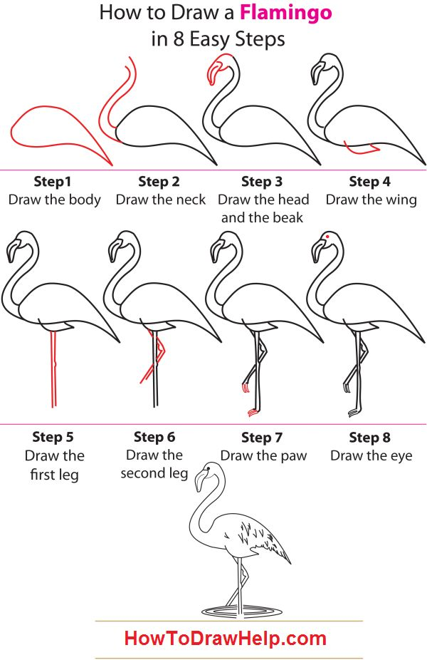 how to draw a flamingo I actually did this and it turned out pretty good!