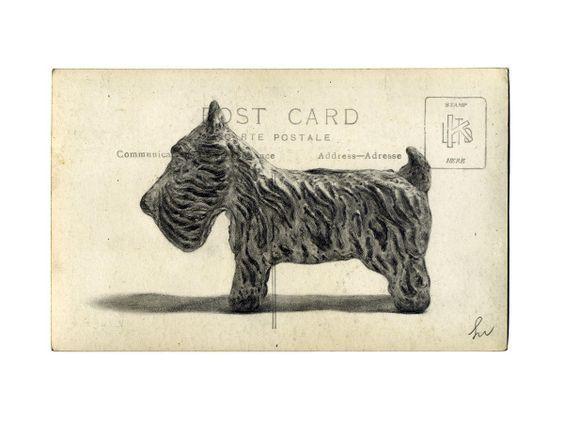 The graphite illustrations of Stuart Whitton.