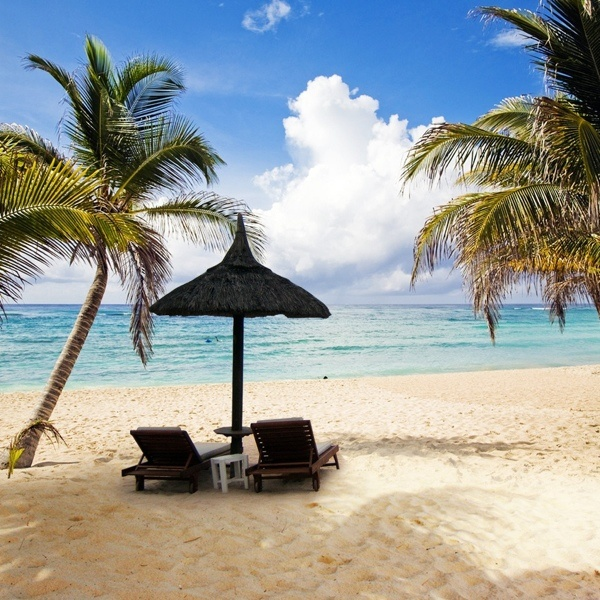 HappyHappy Thoughts, Dreams Places, Favorite Places, Beautiful Places, At The Beach, Happy Places, Beach Umbrellas, Nice Places, Art Happy