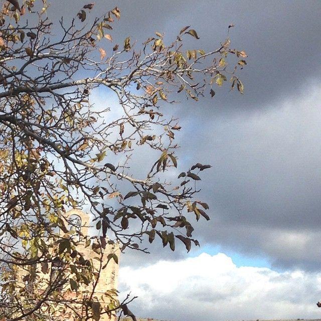 ¡Qué raro está hoy el día! Mitad del cielo azul y despejado, la otra mitad gris y oscura...¿Acabará lloviendo o saldrá en sol? Lo que es seguro es que hace frío! ☀️☁️☔️⛅️ #ideassoneventos #sinfiltros #nofilters #picofday #photooftheday #cielo #lluvia #sol #azul #despejado #gris #oscuridad #tormenta #díararo #meteorología #tiempo #quémepongoconestetiempo #díasenlosquenosabesqueponerte #sky #nubes #Guadalajara #Sigüenza #cuidad #España