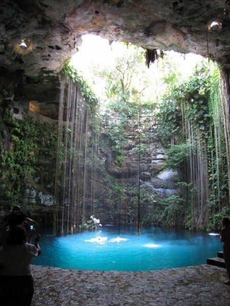 Cenote in Playa del Carmen, Mexico. We went here on our honeymoon in May. So beautiful!