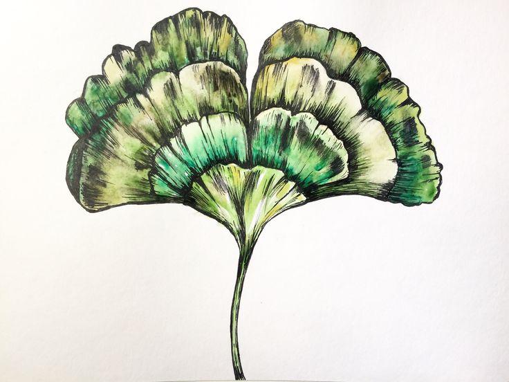 Leaf watercolour and pen illustration. (Molly Burnip) www.mollyburnipart.com