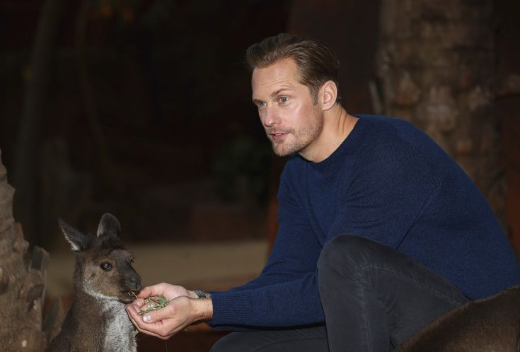 Please Enjoy These Photos of Alexander Skarsgard Kissing Baby Kangaroos