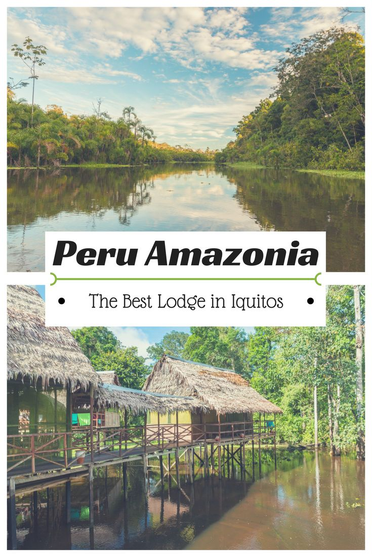 The best Londge in Iqutos in Peru. It is great place to discover Amazon rainforest. Find a tour and accomodation in Iquios and go to Amazonia. #Iquitos #Peru #Peruvian #Rainforest #travel #traveling #vacation #amazonlodge #junglehotel