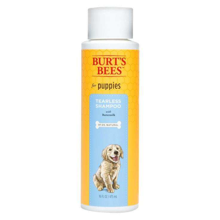 Burt's Bees Tearless Pet Shampoo - 16oz, Sunflower