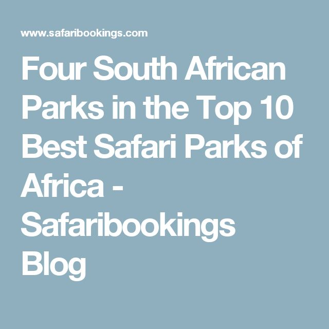 Best Africa Images On Pinterest Africa Travel Zimbabwe And - 10 best safaris in africa