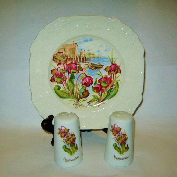 Vintage Newfoundland Canada Souvenir Plaque sel et poivre Shakers Heron Croix poterie à Stoke on Trent England anglais Pitcher plante fleur