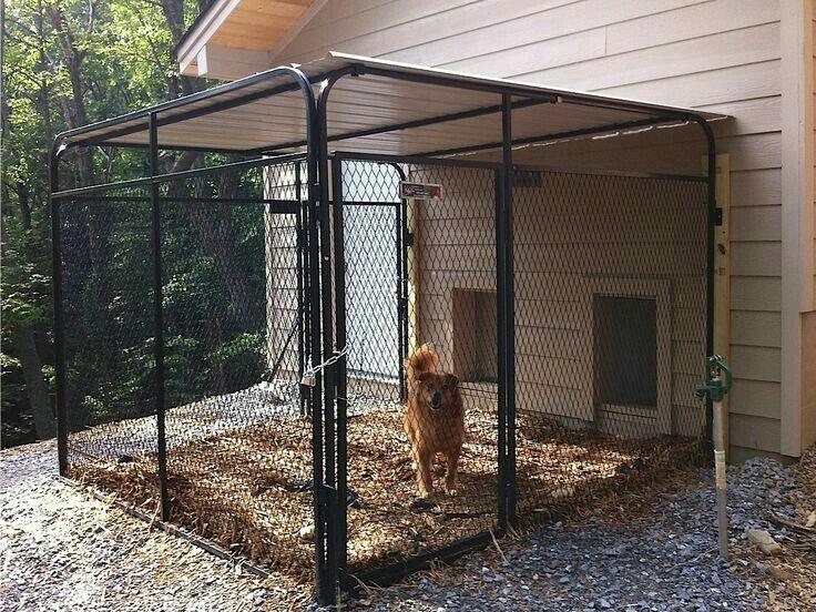 Tin Roof Love It Diy Dog Kennel Indoor Dog Kennel Dog Kennel Designs
