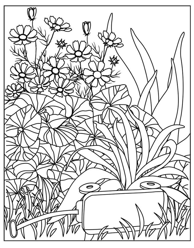 Zendoodle Coloring Big Picture: Calming Garden | Garden ...