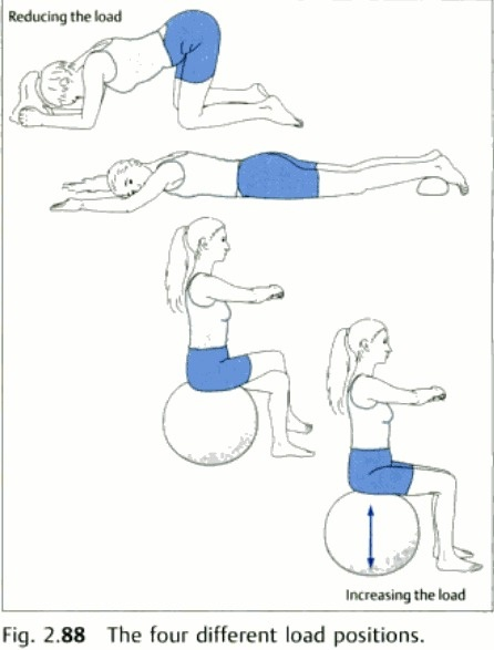 17 Best Images About Pelvic Amp Hips On Pinterest Hip