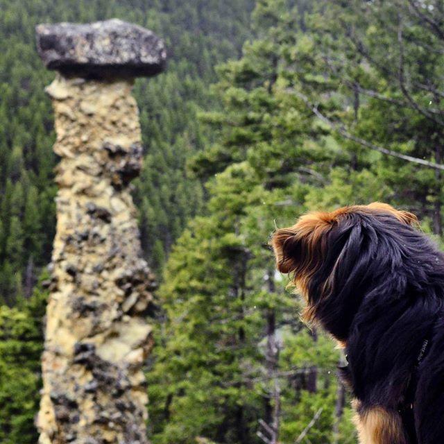 Hiking Trails near Kamloops BC
