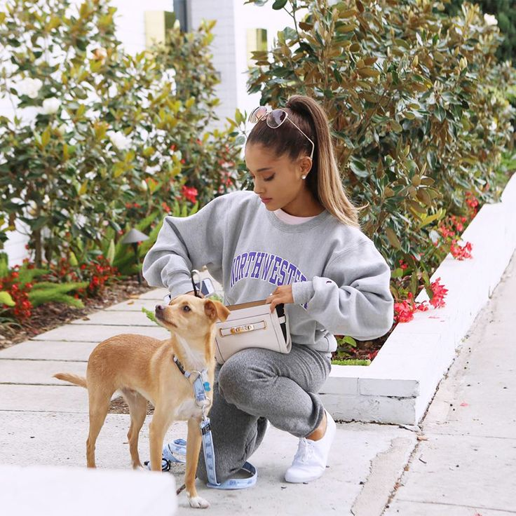 Celebrity Pets and Their Famous Parents - Toulouse and Ariana Grande  - from InStyle.com  This is so funny Toulouse is my hometown in France. :-) Ariana has many dogs, this is the latest.