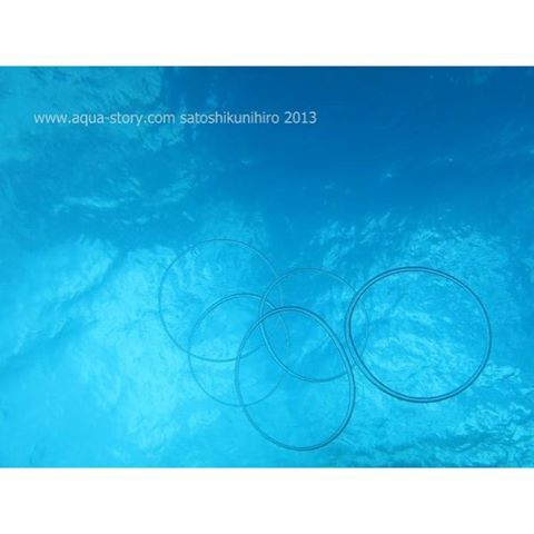 【aquastorykuni】さんのInstagramをピンしています。 《バブルリングの五輪  http://www.aqua-story.com/  #宮古島 #宮古島ダイビング #宮古島ダイビングサービスアクアストーリー #宮古島ダイビング少人数 #フォトダイブ #水中写真 #水中 #水中カメラ #海 #海の写真 #沖縄 #水中カメラ #写真撮ってる人と繋がりたい #写真好きな人と繋がりたい》