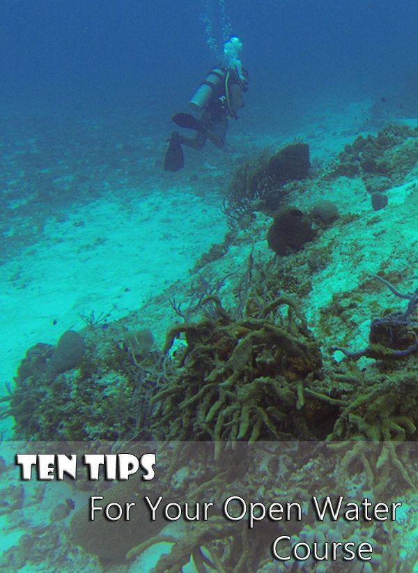 Learn To Scuba Dive: 10 Tips For Your Open Water Course #scubadivinglocations