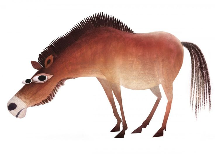 Mongolian Wild Horse | BRENDAN WENZEL / ILLUSTRATION