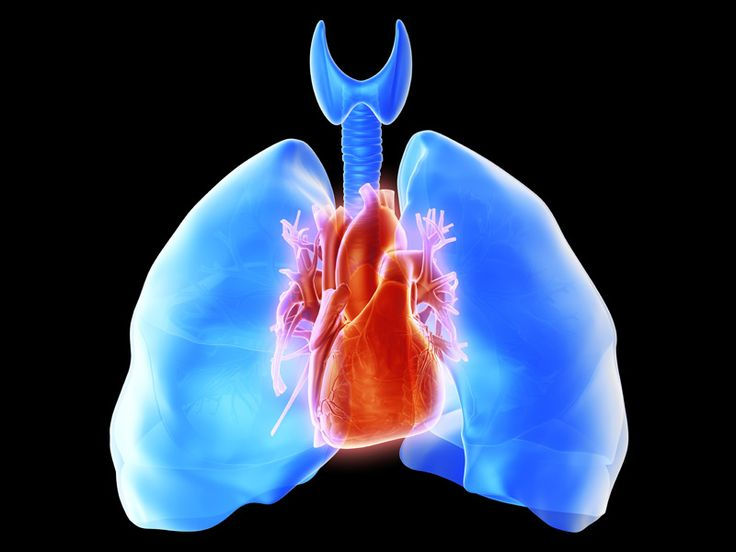 Do proton pump inhibitors increase the risk of community acquired pneumonia, as some studies have suggested?
