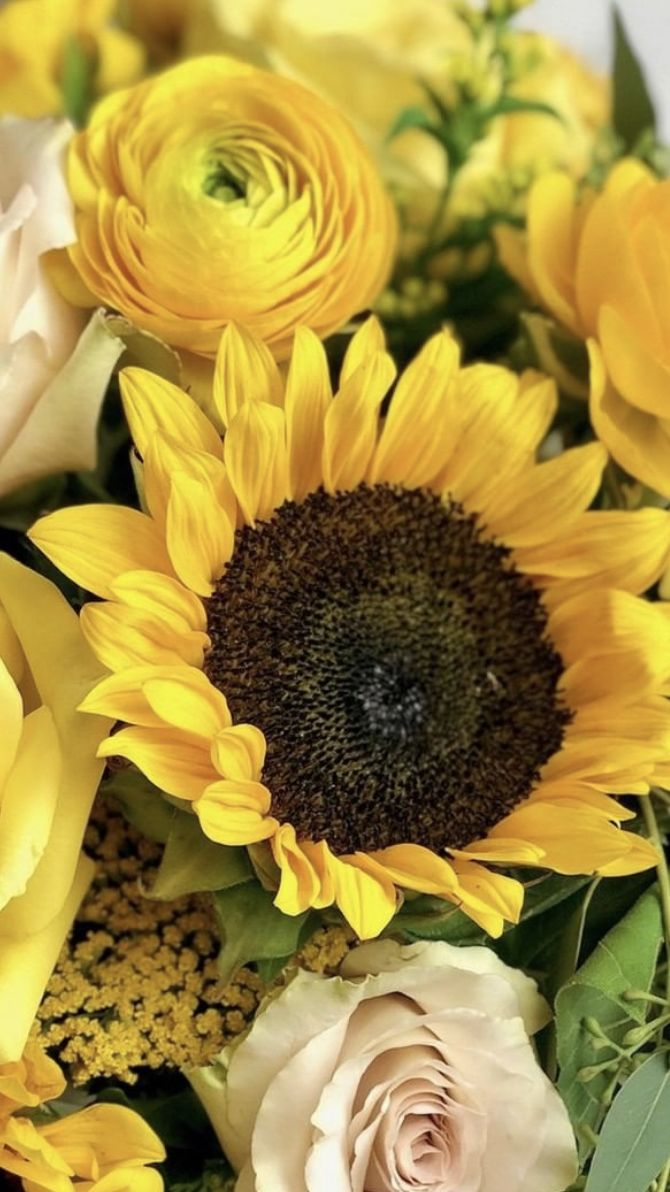 Where To Buy Sunflowers In 2020 Where To Buy Sunflowers Sunflower Delivery Amazing Flowers