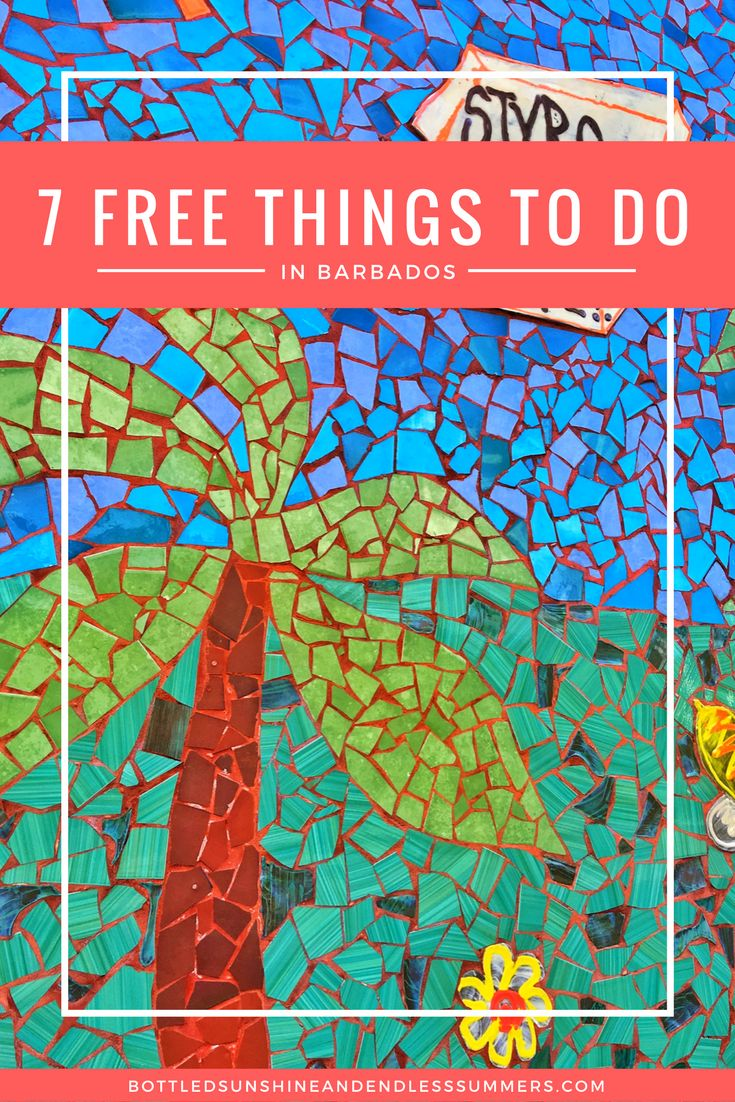 7 FREE THINGS TO DO IN BARBADOS!
