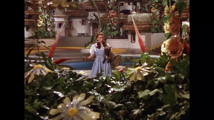 96 best images about wizard of oz on pinterest emerald