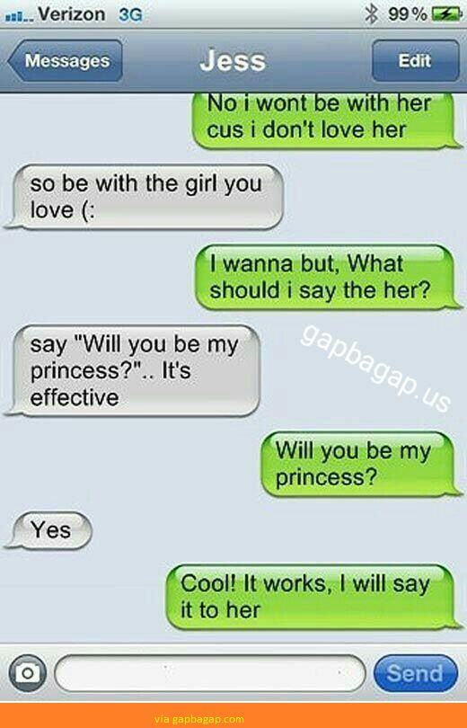 Hilarious Text About Love vs. Princess