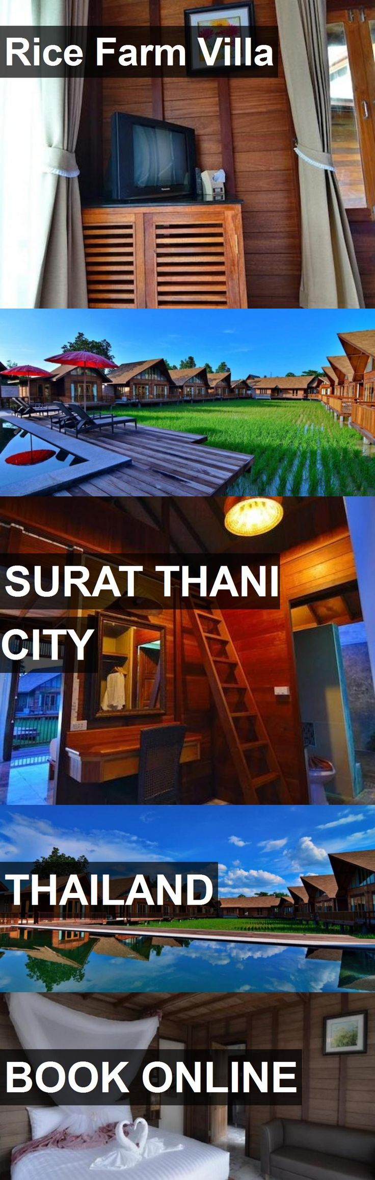 Hotel Rice Farm Villa in Surat Thani City, Thailand. For more information, photos, reviews and best prices please follow the link. #Thailand #SuratThaniCity #RiceFarmVilla #hotel #travel #vacation