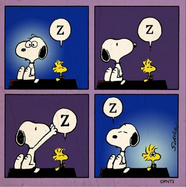 """"""""""", Snoopy and Woodstock trying to Sleep."""