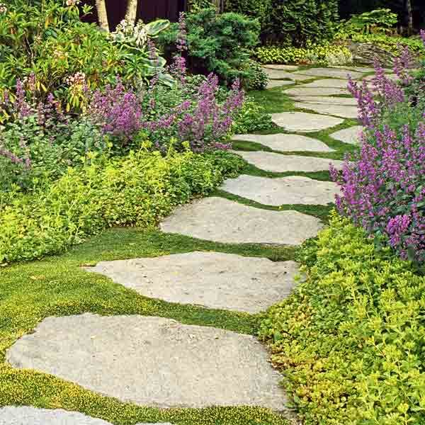 A carpet-like groundcover fills in between stepping stones along a path bordered by chartreuse sedum and purple-flowering catmint. | Photo: Jerry Pavia | thisoldhouse.com