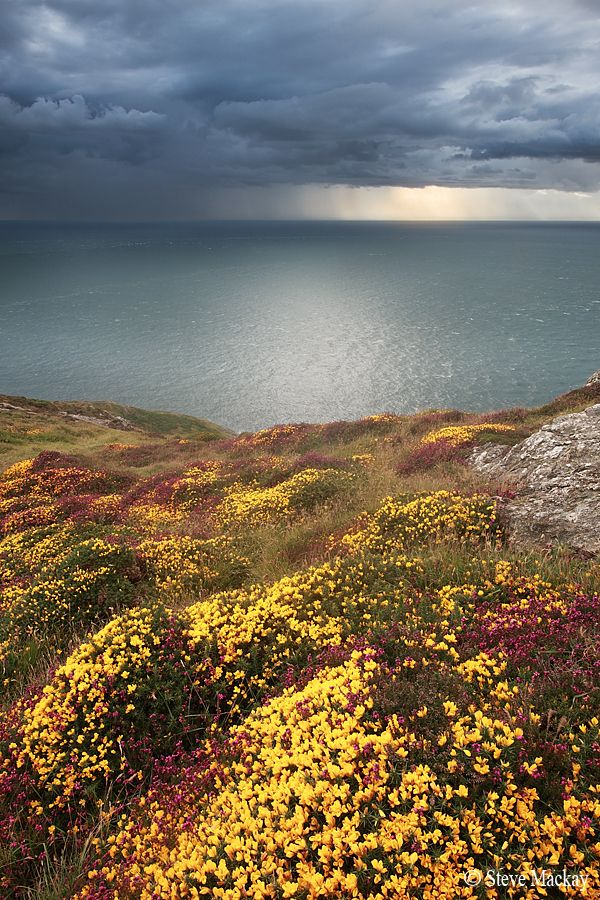 Aberdaron Hinterland by Steve Mackay