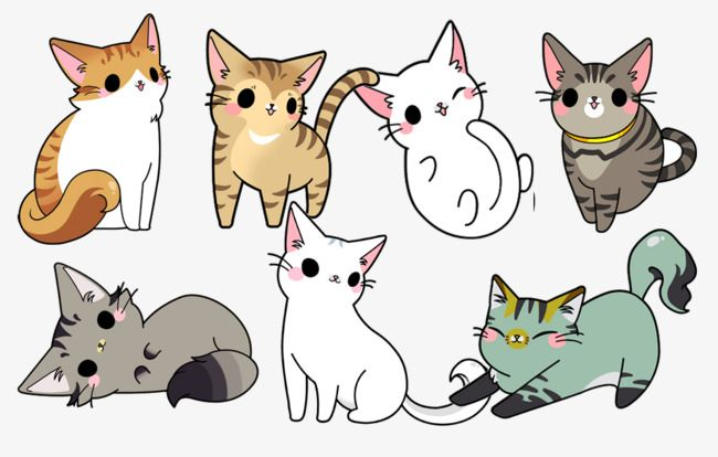 Hand Drawn Cat Family Cat Clipart Hand Painted Design Cat Cat Png Transparent Clipart Image And Psd File For Free Download Cute Drawings Cute Cat Drawing Kitty Drawing