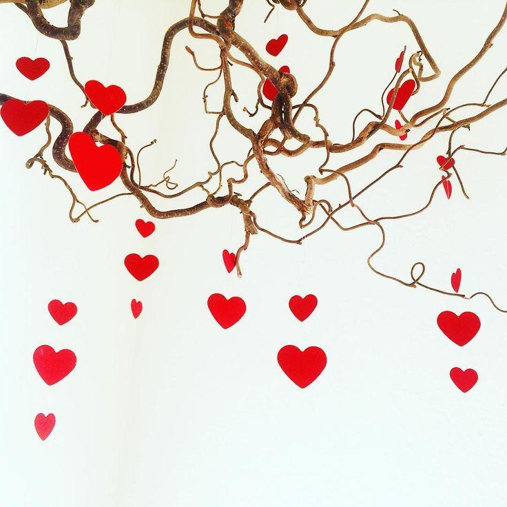 God kreativ Valentines Dag ☺ Personligt er det ikke noget vi går så højt op i herhjemme, men det er en god anledning til at være #kreativ og disse hjerter har fået lov at blive hængende helt til nu siden jul 😄 Happy creative Valentines ☺ For me it's more an excuse to be creative than something we actually celebraide 😄✂️❤️ #valentinesdag #creativevalentines ❤️ #håndlavet #ophæng #kreativ #bolig #papperspyssel #allehjertersdag #panduropyssel #crafting #valentinesdecor #valentinescrafts…