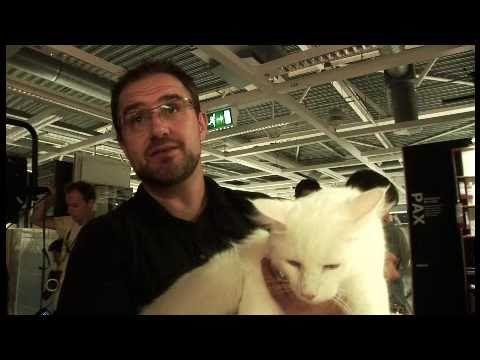 ▶ IKEA - Herding Cats (Mother London) - YouTube