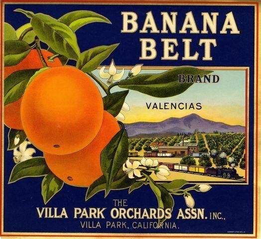 Villa Park Banana Belt Orange Citrus Crate Label Art Print