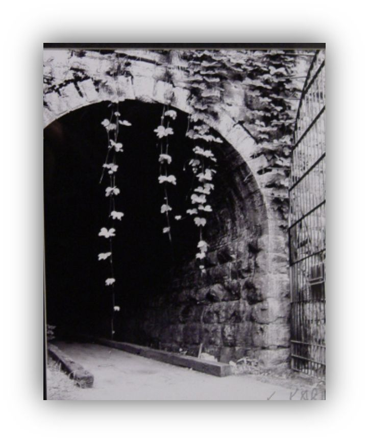 """Kris Kelly Stanfield, photo """"W & A railroad"""" at Tunnel Hill"""