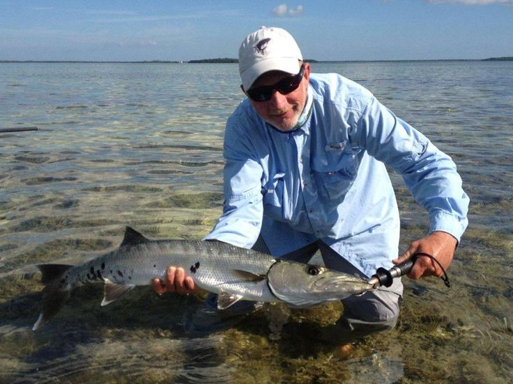 17 best images about key west fishing on pinterest flats for Key west shore fishing