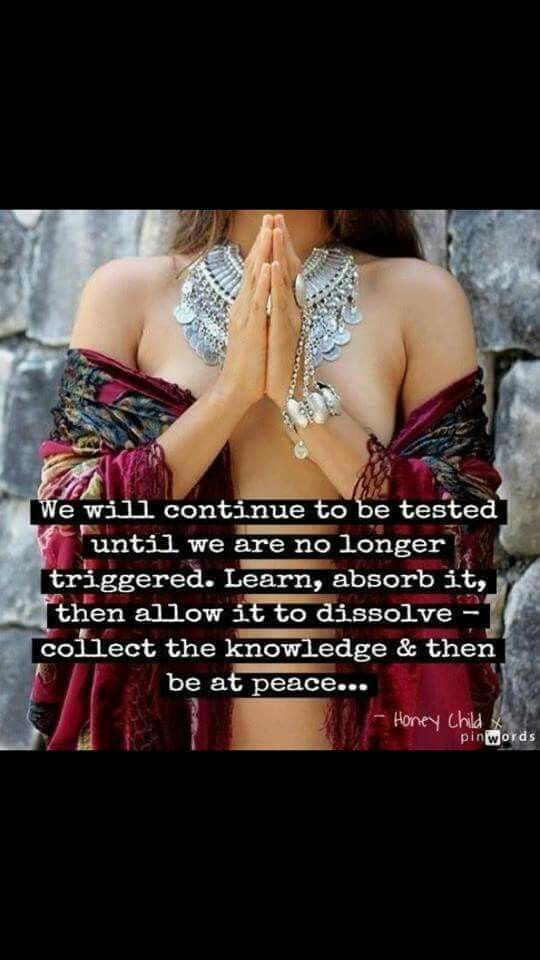 We will continue to be tested until we are no longer triggered ~ Learn ~ Absorb it, then allow it to dissolve ~ collect the knowledge & then be at Peace ༺❁༻ honey child