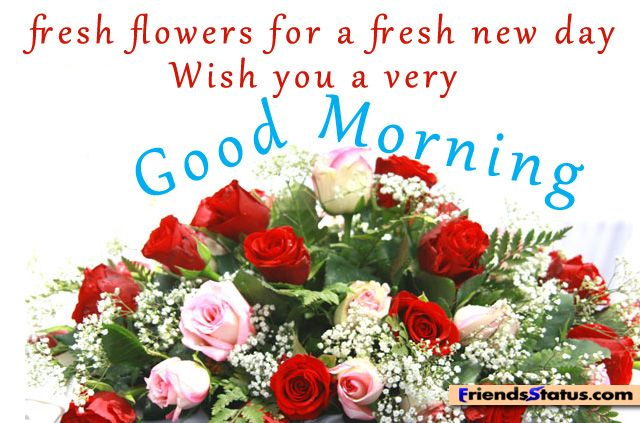 Good Morning Sunday Flowers Images : Good morning my friends have a great weekend coffee