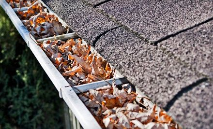 Groupon - Exterior Home Services, a Roof-Maintenance Package, or a Chimney Tune-Up from Home Pro Exterior Services (Up to 83% Off). Groupon deal price: $19.00