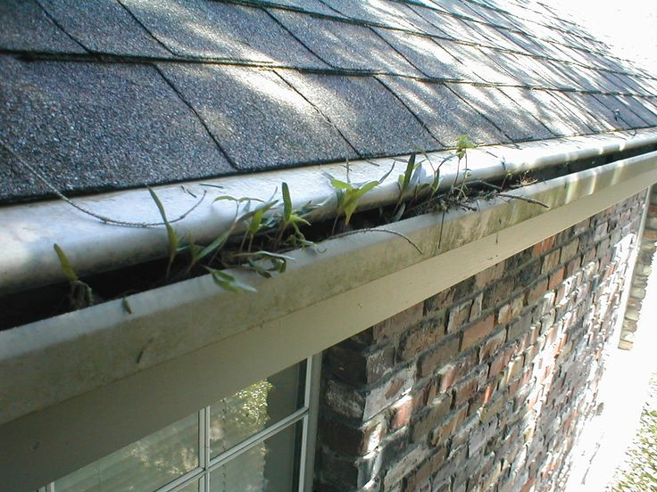 1000 Images About Gutter Guards Do They Really Work On