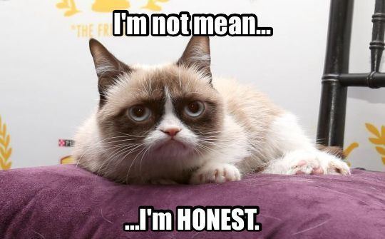 Grumpy Cat isn't mean…she's honest! #PicOfTheDay