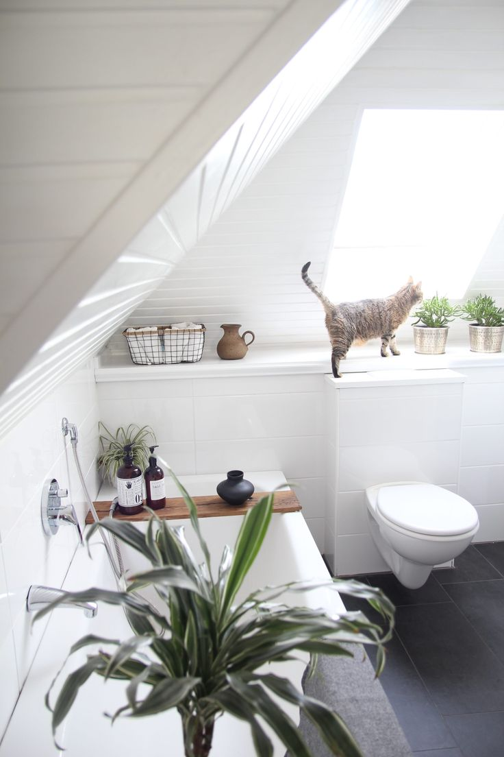 89 besten Badezimmer einrichten | bathroom ideas Bilder auf ...