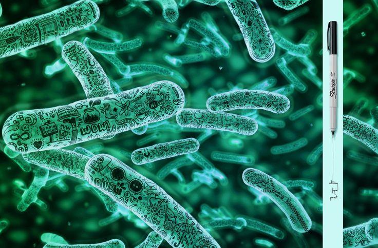 Sharpie-Microscopic-green.jpg (1800×1185)