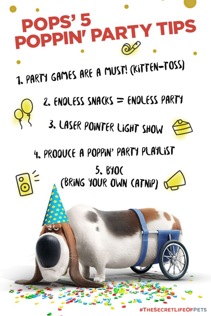 57 best secret life of pets party board images on pinterest