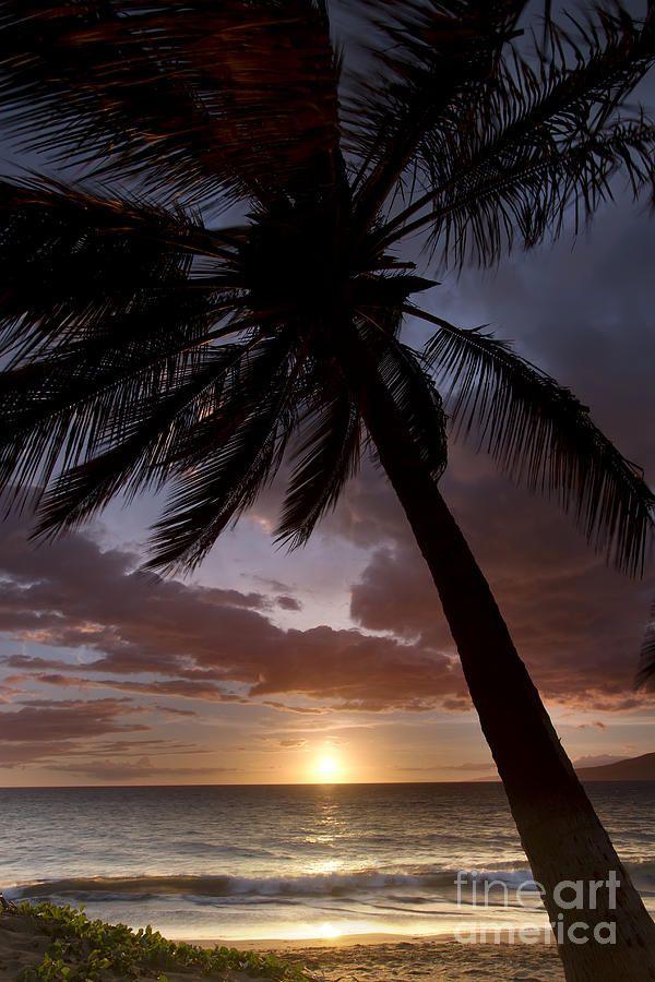 Hard gay sunrise sunset — 3