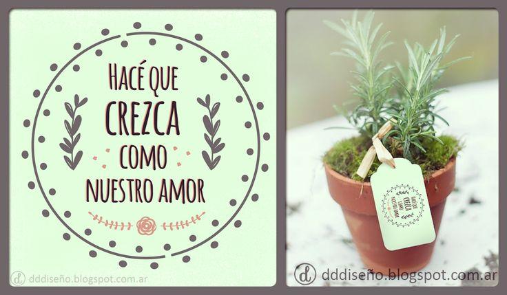 Souvenir para bodas - Plantines