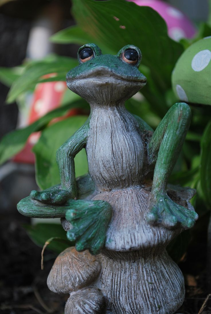 My Little Frog In My Fairy Garden