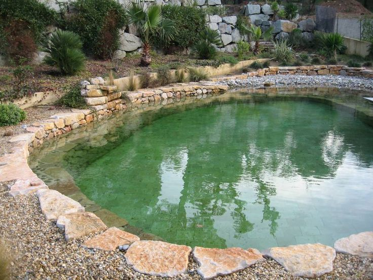 Natural swimming pools germany specializing in the for Koi pond natural swimming pool