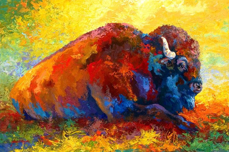 22 Best My Buffalo Paintings Images On Pinterest Bison