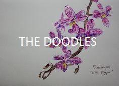 the doodles